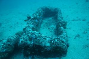 jakljan sarkofazi (4)